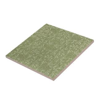 Ginkgo biloba Leaves on Sage Green Tiles