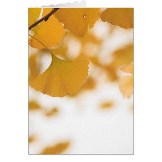 Ginkgo Card