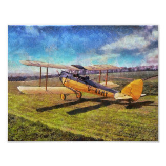 Gipsy Moth Photographic Print