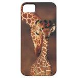 Girafe adulte avec le veau (camelopardalis de Gira Étuis iPhone 5