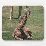 Girafe de bébé tapis de souris