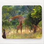 Girafe et bébé Mousepad Tapis De Souris