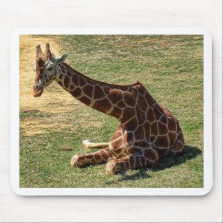 Girafe se reposante tapis de souris
