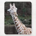 Girafe Tapis De Souris