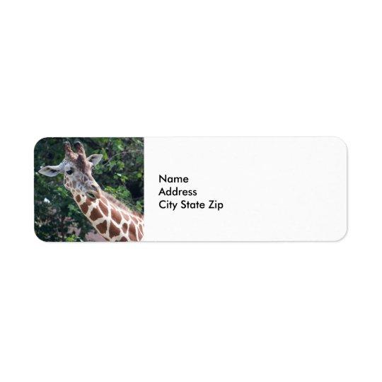 Giraffe 7031
