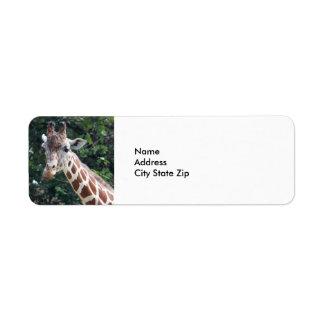 Giraffe 7032 return address label