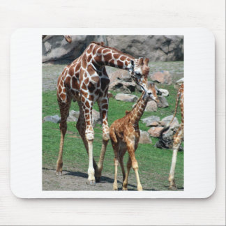 Giraffe Africa Safari Animal Personalize Giraffes Mouse Pad