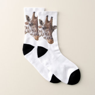 Giraffe Animal 1