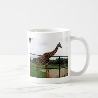 Giraffe Animal Photograph Coffee Mug