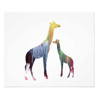 Giraffe Art Photo Print