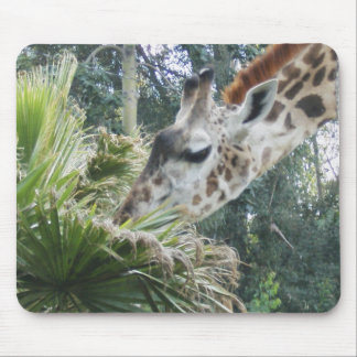 Giraffe at Lunch Mouse Pad