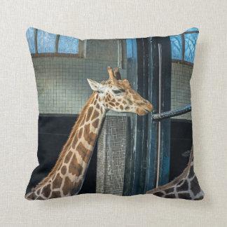 Giraffe at the zoo throw cushion