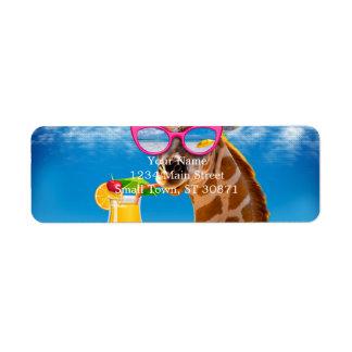 Giraffe beach - funny giraffe