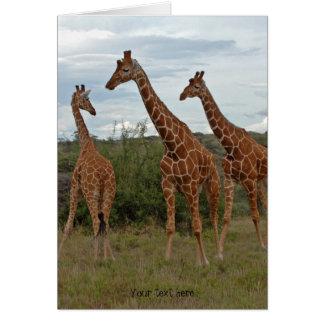 Giraffe Card 4