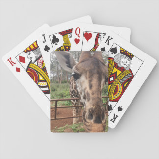Giraffe Card Deck