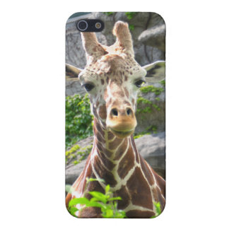 Giraffe Case For The iPhone 5