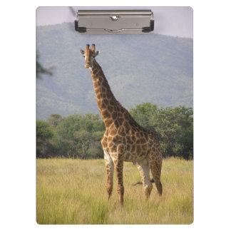 Giraffe Clipboard