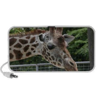 Giraffe Doodle Speaker