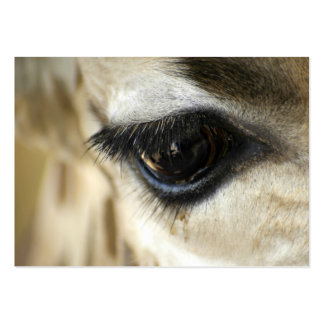 Giraffe Eye - ACEO 8 Large Business Cards (Pack Of 100)