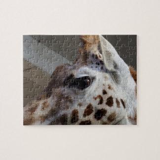 Giraffe Eye Jigsaw Puzzle