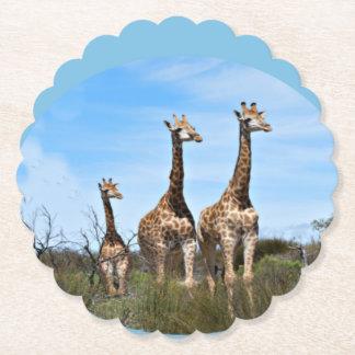 Giraffe Family Paper Coaster