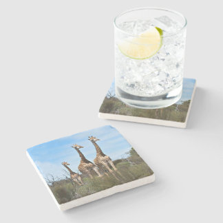 Giraffe Family Stone Beverage Coaster