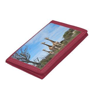 Giraffe Family Tri-fold Wallet