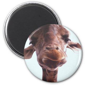 Giraffe Funny Face Magnet