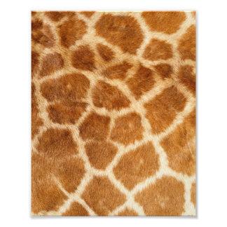 Giraffe Fur Print Photograph
