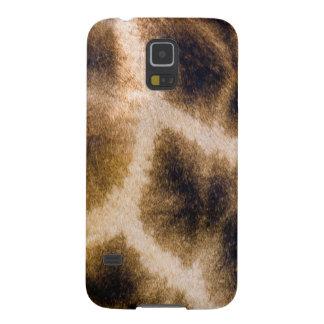 Giraffe (Giraffa Camelopardalis) Skin Galaxy S5 Cover