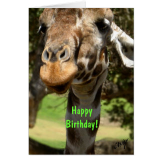 Giraffe, Happy Birthday! Card