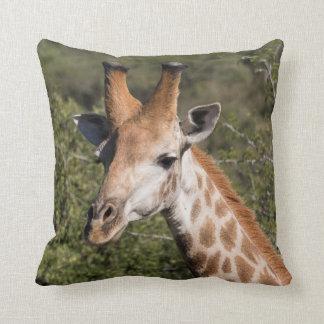 Giraffe Head Detail Throw Pillow