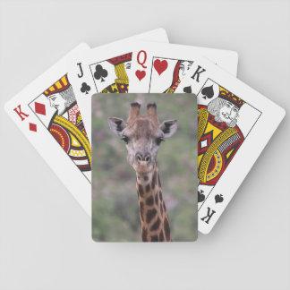 Giraffe Headshot Playing Cards