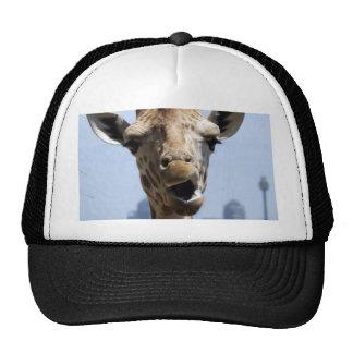 Giraffe Hey Trucker Hat