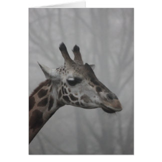 Giraffe in the Fog Card