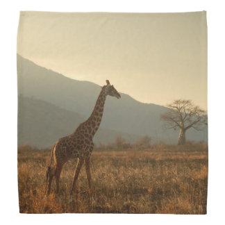 Giraffe in the Savannah Bandana