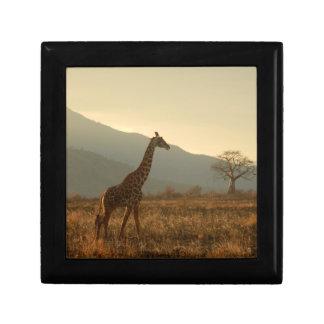 Giraffe in the Savannah Keepsake Box