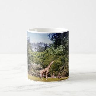 Giraffe In The Sun Coffee Mug