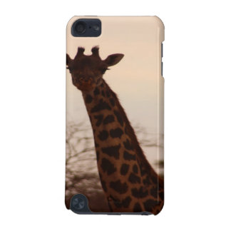 Giraffe iPod Touch (5th Generation) Cases