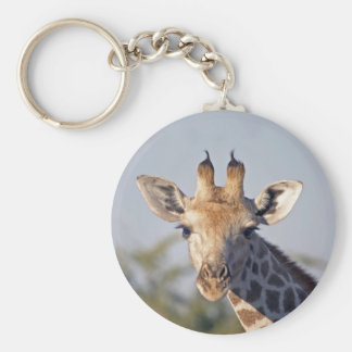 Giraffe Key Chains