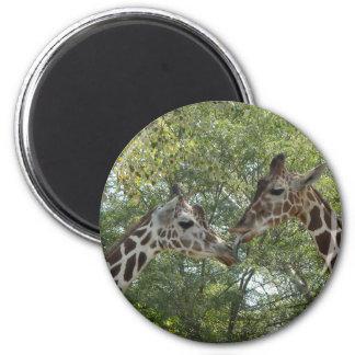 Giraffe Love Magnet
