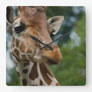 Giraffe Lovers Art Gifts Square Wall Clock