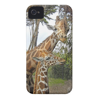 Giraffe Mom and Baby iPhone 4 Case