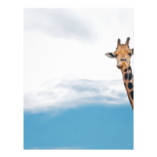 Giraffe neck and head against the clear blue sky letterhead