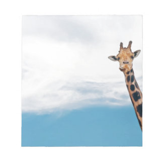 Giraffe neck and head against the clear blue sky notepad