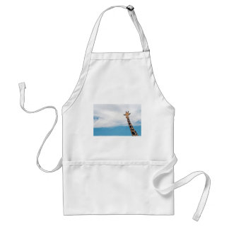 Giraffe neck and head against the clear blue sky standard apron