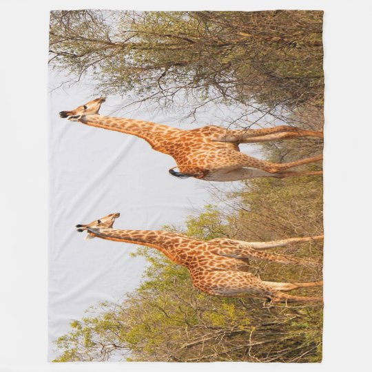Giraffe Pair Fleece Blanket