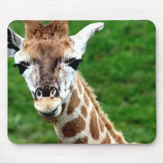 Giraffe Photo Mouse Pad