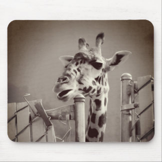 Giraffe Photograph - Vintage Style Mouse Pad