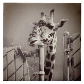 Giraffe Photograph - Vintage Style Tile